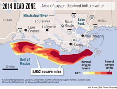 Voluntary plan to reduce fertilizers not enough to shrink Gulf's 'Dead Zone', new study says   NOLA.com