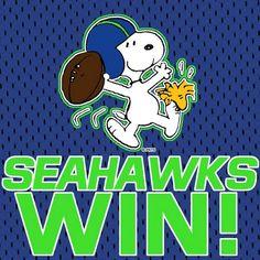 Seahawks I dont like football but Snoopy looks cute! Seahawks Fans, Seahawks Football, Best Football Team, Football Stuff, Nfl Seattle, Seattle Sounders, Seattle Seahawks, Nfc Teams, Sports Teams