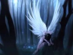 wonder why i like the dark angels Angel Gif, Sad Angel, Angel Wings, Angel Dust, Fairy Wings, Angel Wallpaper, Forest Wallpaper, Angel Images, Angel Pictures