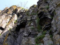 Steblová skala 1 - Daniela Tomášiková