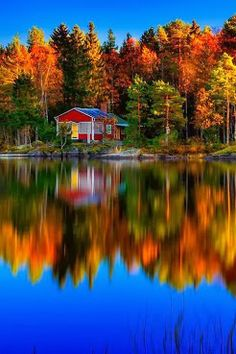 Stay in a cottage by a crystal clear lake in Scandinavia.