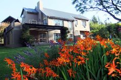 Clarens Self Catering Cottage/ House/ Bungalow