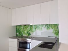 Glass picture splashback