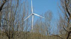 Un borrador de compromiso acordado entre la Comisión Europea y el gobierno alemán sobre las energías renovables es objeto de agria disputa en el seno del Ejecutivo de Bruselas