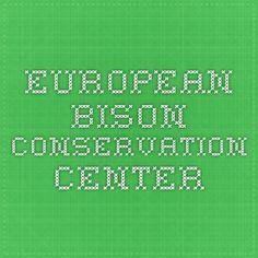 European Bison Conservation Center