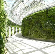 GSky Green Wall at Longwood Gardens, East Conservatory, Kennett Square, PA. Largest Green Wall in North America.