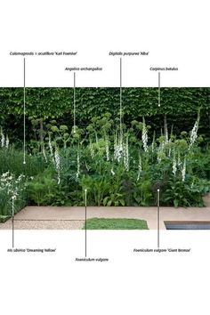 Urban Gardening, post project 4997577308 for a truly stunning Garden, post layou…