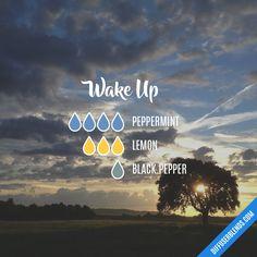Blend Recipe: 4 drops Peppermint, 3 drops Lemon, 1 drop Black Pepper