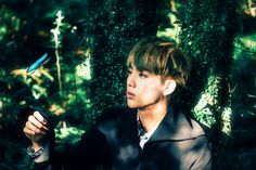 [Picture] BTS 화양연화 pt.2 Concept Photo – [ Papillon ] [151124] | btsdiary