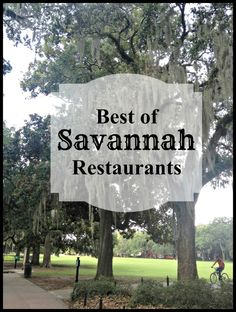 Looking for some great Savannah restaurants? Besides including links to restaurants and menus, we also include both address and local landmarks to make it easy to plan your trip. Savannah Georgia Travel, Savannah Chat, Savannah Smiles, Visit Savannah, Vacation Trips, Vacation Spots, Vacation Ideas, Dream Vacations, Top Vacations
