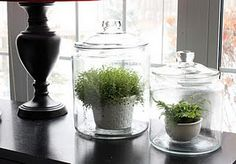 Have these jars - must do!