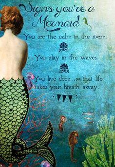 Signs you're a mermaid... Mermaid Sign, Mermaid Quotes, Mermaid Cove, Mermaid Fairy, Mermaid Poems, Mermaid Canvas, Mermaid Board, Real Mermaids, Mermaids And Mermen