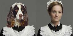The Dogs of Downton Abbey, Presented By Dogster / The English Room Blog Are you ready for the Season 4 premier of Downton Abbey tonight?