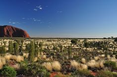 The Red Centre - the dancing colors