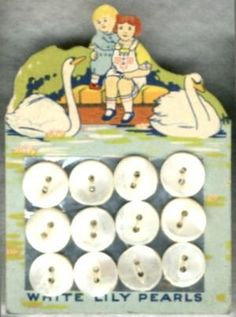"""(::)  vintage pearl buttons on """"White Lily"""" original factory card.  Swans swimming near a girl & boy perched on a low stone wall.  From Washington, Iowa factory of the American Pearl Button Co. ( 1908-1965 )  {Research & original description by DiaNNe - """"Vintage Button Cards""""}"""
