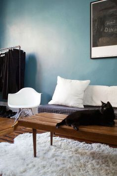 I'm not usually a fan of the blue palettes, but this mix of medium blue with dollops of white and black is both crisp and soothing.