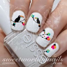 Parrot Nail Art Nail Water Decals Transfers Wraps 20 water decals on a clear water transfer which can be applied over any color varnish on either your natural or false nail. Use: 1. Paint nails in the