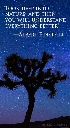 """""""Look deep into nature, and then you will understand everything better."""" —Albert Einstein"""