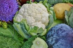 Welcome to My World - Cruciferous Vegetables - Broccoli, Bok Choy - Cabbage - Alexis Unlimited