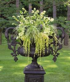 Whether you're looking for beautiful gardens across Canada or wanting to tour botanical gardens around the world, tour this inspiring section to visit gardens without leaving home. Potted Flowers, Outdoor Flowers, Flower Pots, Flower Containers, Container Plants, Container Gardening, Painted Dressers, Urn Planters, Floral Pins