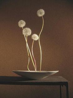 "nostalgia-gallery: "" ""Ikebana"" with Dandelion "" Ikebana Flower Arrangement, Ikebana Arrangements, Floral Arrangements, Art Floral Japonais, Art Japonais, Japanese Flowers, Japanese Art, Arreglos Ikebana, Design Oriental"