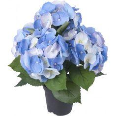 Blomster Hydrangea, Hanukkah, Wreaths, Plants, Cottage, Home Decor, Homemade Home Decor, Casa De Campo, Door Wreaths