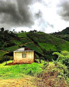 En el pie de monte andino. Barinas Venezuela