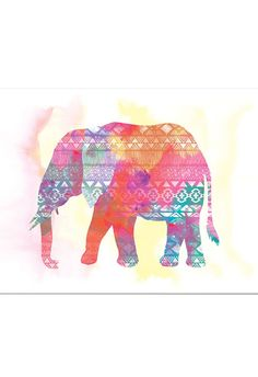 Psychedelic Pachyderm Canvas Art