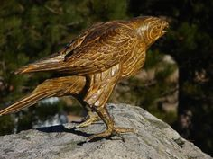 #Bronze #sculpture by #sculptor Stephane Deguilhen titled: 'The Hawk (Perched Bronze Bird of Prey statues)'. #StephaneDeguilhen