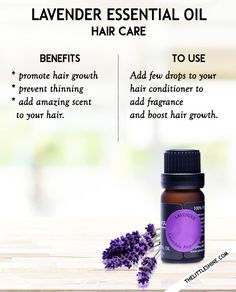 TOP 10 ESSENTIAL OIL FOR HAIR - BENEFITS & HOW TO USE - The Little Shine
