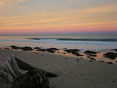 dawn seaweed Gisborne New Zealand, See The Sun, Surfboard, Coaching, Surfing, Seaweed, City, World, Gallery