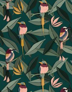 Birds - Sample