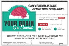 Infographic: What happens to your brain when you use social media | Articles | Main