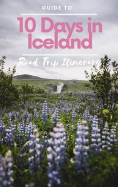 10 days Iceland itinerary: your guide to a perfect road trip in Iceland. It is possible to see all of Iceland in 10 days doing a road trip in Iceland ring road. We offer you a balanced Iceland itinerary with amazing stops to get the best Iceland has to offer. Perfect Road Trip, Places Worth Visiting, Iceland Waterfalls, Road Trip Hacks, Iceland Travel, Plan Your Trip, Travel Around The World, Travel Guides, Travel Photos