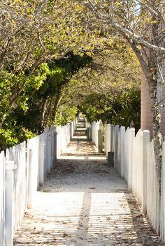 Seaside, FL This little path brings back some good memories.