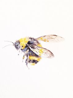 "Watercolor Painting, Bumble Bee, Original Painting, 9""x12"""