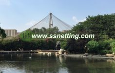 Aviary Wire Netting - Buy aviary wire netting, zoo aviary mesh, wire rope bird netting Product on Liulin Zoo Mesh Supplier Bird Netting, Bird Aviary, Stainless Steel Wire, House, Home, Homes, Houses