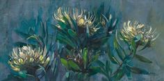 The stunning image of the local SA wild flower the pincushion beautifully painted by local artist Shane Rogatschnig