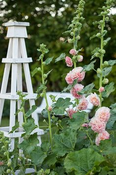 Inredning trädgård loppis och andra saker som gör mig glad