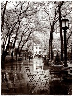 Cascading Trees & Rainy Days in the City Wall Decoration x April Showers Black And White City, Black And White Pictures, Black And White Prints, Voyage New York, Ile Saint Louis, April Showers, Oh The Places You'll Go, Black And White Photography, Rainy Days