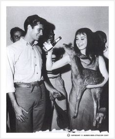 of course audrey partied with baby deer.