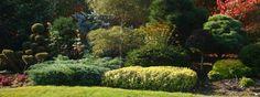 Realizované návrhy zahrad | Okrasna-zahrada.cz, návrhy a realizace zahrad Gardening, Plants, Lawn And Garden, Plant, Planets, Horticulture