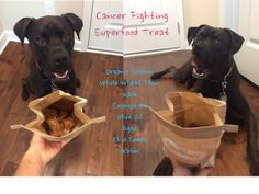 K9sOverCoffee | Cancer Fighting Superfood Treat