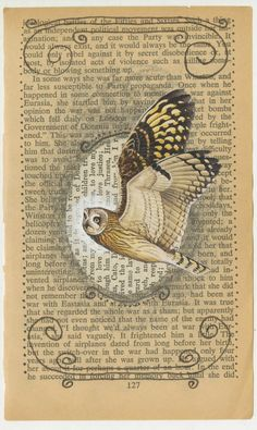 Owl in book art - lovely picture of an owl in flight. I think faces of owls are more popular - even though any bird flight images are fascinating and awesome. ;) Mo