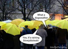 It's raining blowjobsteels