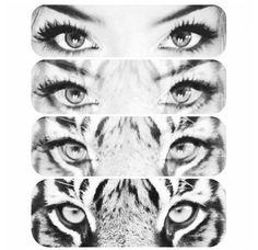 women's eyes=tiger's eyes