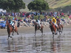 The stage is set for a day of highly competitive beach racing at Castlepoint on Saturday, March  7th 2015.