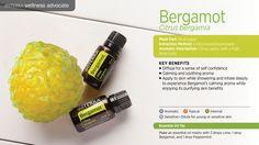 L'huile essentielle de Bergamote doTerra