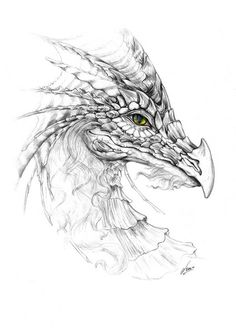 excellent pencil drawings of dragon Dragon Coloring Page, Coloring Pages, Adult Coloring, Fantasy Dragon, Fantasy Art, Realistic Dragon Drawing, Dragon Eye Drawing, Pencil Drawings, Art Drawings