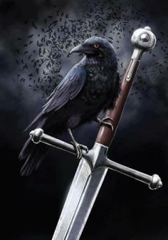 The Morrigan's Sword.. The great battle Goddess fell in love with Cuchullain but he rejected her love and in doing so earned her wrath. As he stood dying she came and perched on his shoulder in the shape of one of her precious ravens. The ultimate revenge of the woman scorned :)